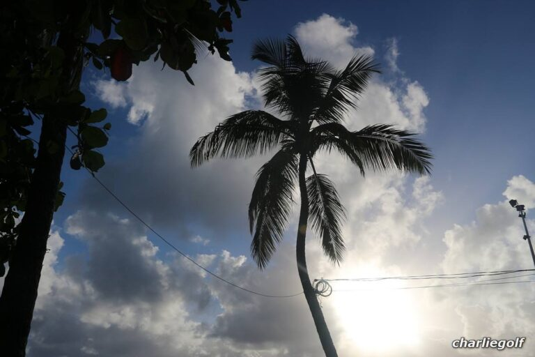 Read more about the article Guadeloupe – 6° giorno