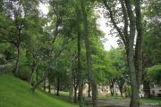 2011_07_01_17h58m09