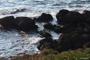 2009_09_26_17h52m15