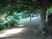 2006_08_04_19h37m33