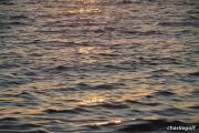 2012_02_18_20h36m37