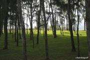 2011_08_04_15h15m11